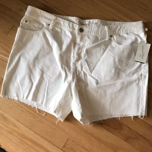 White cottoff jean shorts NWT (20)
